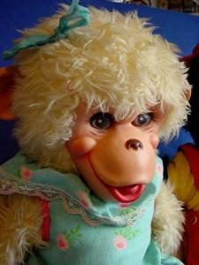 Rushton monkey Zip and his girlfriend g face