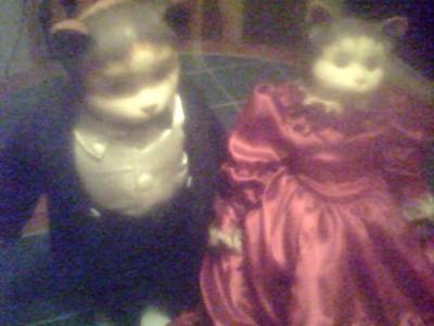 Antique Bisque Cat Dolls