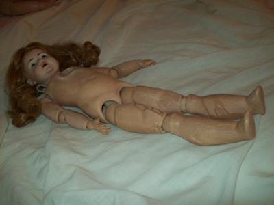 J.D.K. on Seeley jointed body